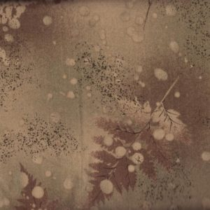 11695 Daiwabo Brown