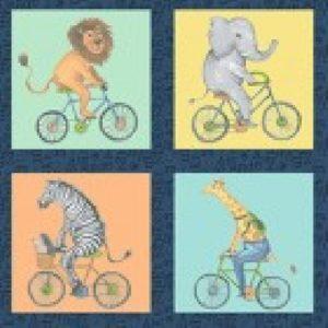 y2855-55 Bik Ride 60cm x 55
