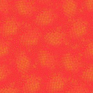 Y2801-80 Feline Frolic (orange)